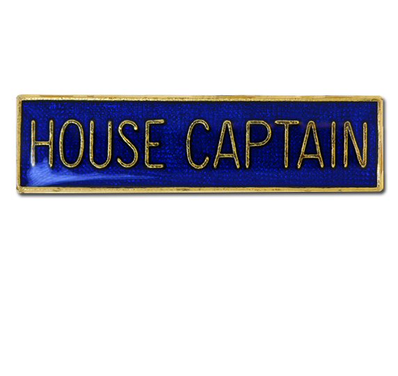 house captain The vice house captains encourage and motivate their house members they  assist the pe teacher and school staff at all school sport events vice captains.