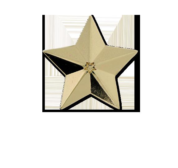 3D Star Star Badge