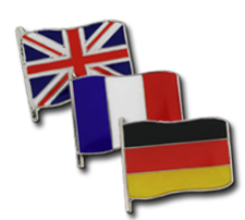 Small Flag Badges