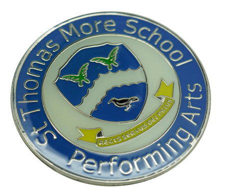 Example enamel school badges