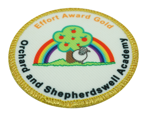 Example sew on embroidered school badge