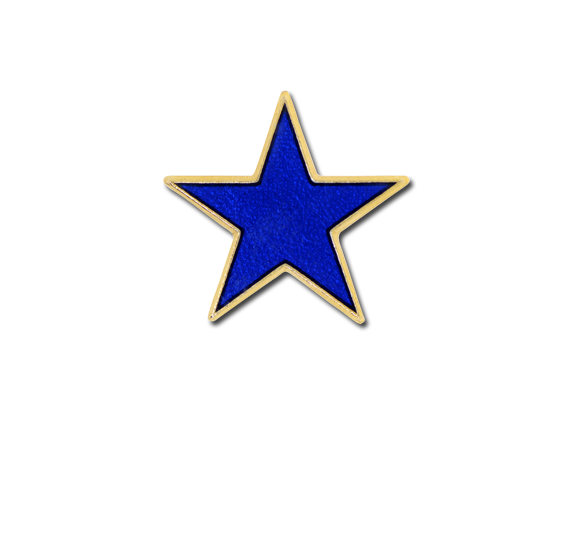 Small Star Star Badge