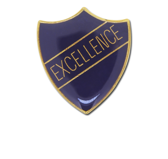 Excellence Enamelled Shield Badge