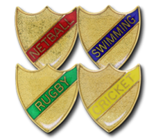 Small Enamelled Stripe Shield Badges