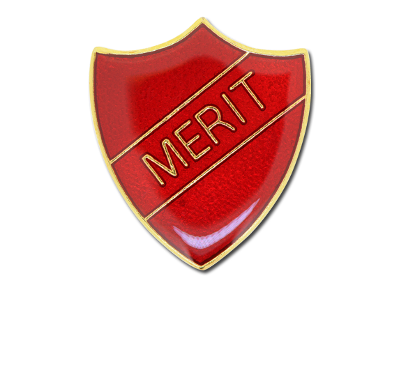 Merit Enamelled Shield Badge