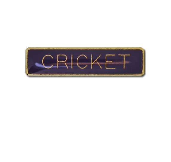Cricket Small Bar Badge