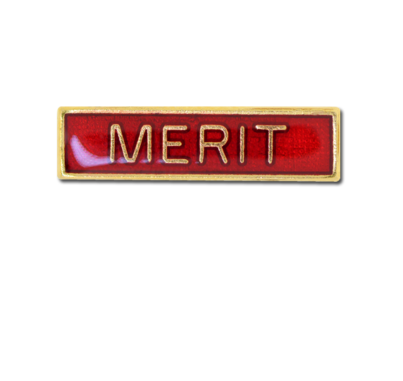 Merit Small Bar Badge