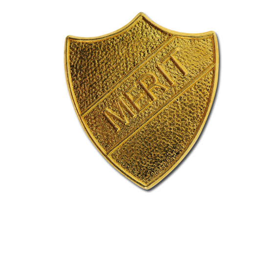 Merit Metal Shield Badge