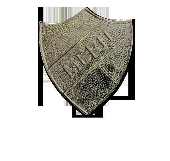 Merit Metal Shield Badge