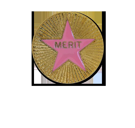 Enamelled Merit Round Badge