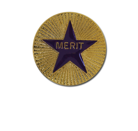 Enamelled Merit Round Badge