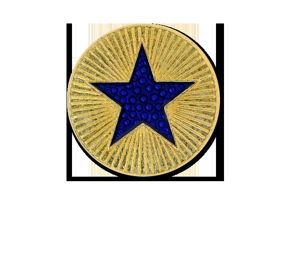 Enamelled Plain Star Round Badge