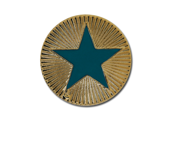 Enamelled Plain Star Round Badge