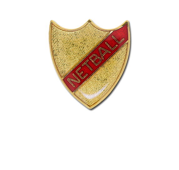 Netball Small Enamelled Stripe Shield Badge