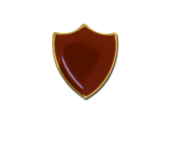 Small Enamelled Shield Badge
