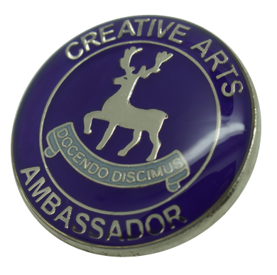 Example reward badges for schools