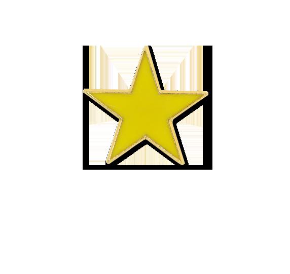 Small Star Star Badge