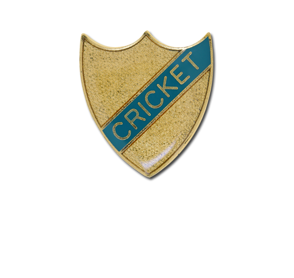 Cricket Small Enamelled Stripe Shield Badge